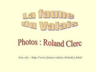 La faune  du Valais