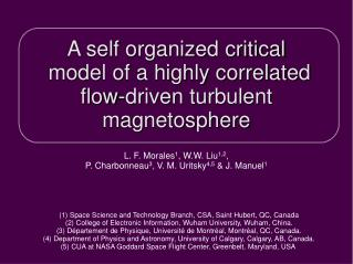 A self organized critical  model of a highly correlated  flow-driven turbulent magnetosphere