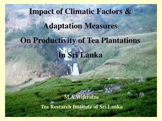 Impact of Climatic Factors &  Adaptation Measures On Productivity of Tea Plantations In Sri Lanka