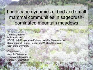 Landscape dynamics of bird and small mammal communities in sagebrush-dominated mountain meadows