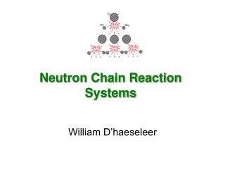 Neutron Chain Reaction Systems