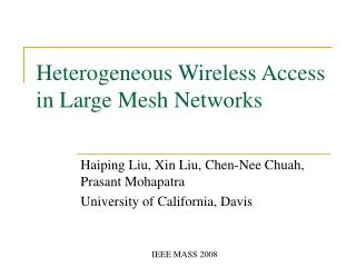 Heterogeneous Wireless Access in Large Mesh Networks
