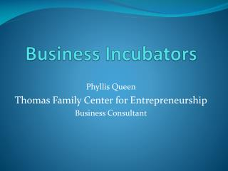 Business Incubators