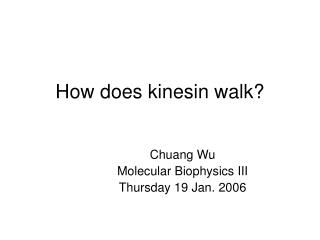 How does kinesin walk