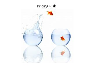 Pricing Risk