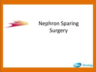 Nephron Sparing Surgery