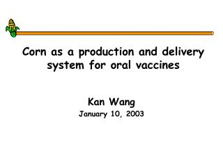 Corn as a production and delivery system for oral vaccines