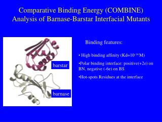 Comparative Binding Energy (COMBINE) Analysis of Barnase-Barstar Interfacial Mutants