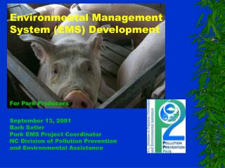 Environmental Management  System (EMS) Development