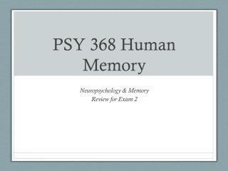 PSY 368 Human Memory