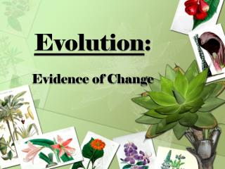 Evolution : Evidence of Change