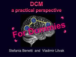 DCM  a practical perspective