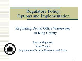 Regulatory Policy:  Options and Implementation