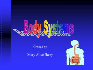Body System 2