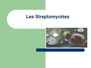 Les Streptomyc tes