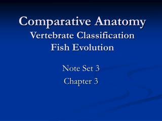 Comparative Anatomy Vertebrate Classification Fish Evolution