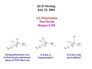 QCD Meeting July 23, 2004