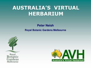AUSTRALIA S  VIRTUAL HERBARIUM