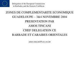 ZONES DE COMPLEMENTARITE ECONOMIQUE GUADELOUPE – 3&4 NOVEMBRE 2004 PRESENTATION PAR AMOS TINCANI