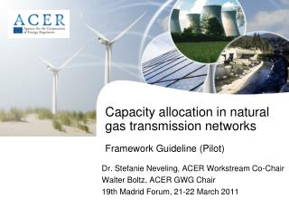 Capacity allocation in natural gas transmission networks  Framework Guideline Pilot