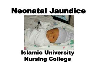 Neonatal Jaundice Islamic University  Nursing College