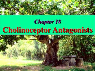 Chapter 18 Cholinoceptor Antagonists