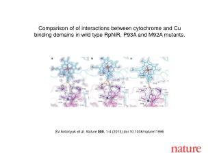 SV Antonyuk  et al. Nature  000 , 1-4 (2013)  doi:10.1038/nature11996