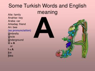 Some Turkish Words and English meaning