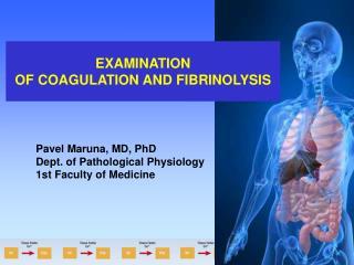 EXAMINATION OF COAGULATION AND FIBRINOLYSIS