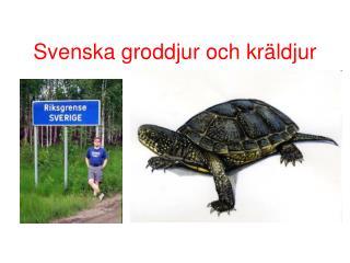 Svenska groddjur och kräldjur