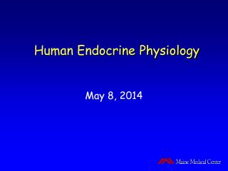 Human Endocrine Physiology