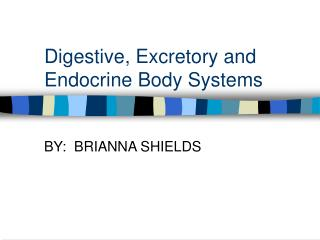 Digestive, Excretory and Endocrine Body Systems
