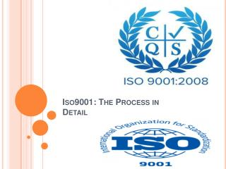 Iso9001 The Process in Detail