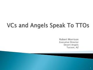 VCs and Angels Speak To TTOs