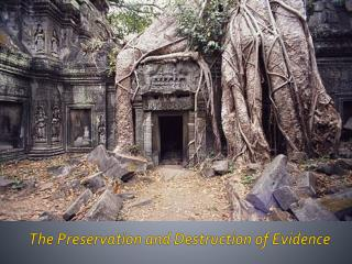 The Preservation and Destruction of Evidence