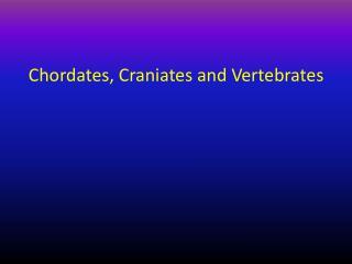Chordates, Craniates and Vertebrates