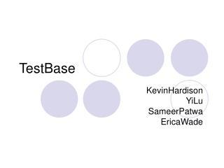 TestBase