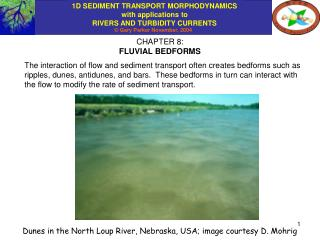 CHAPTER 8: FLUVIAL BEDFORMS