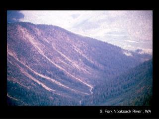 S. Fork Nooksack River , WA