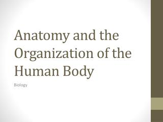 Anatomy and the Organization of the Human Body