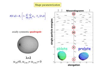 Shape parameterization