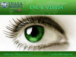 EYE & VISION
