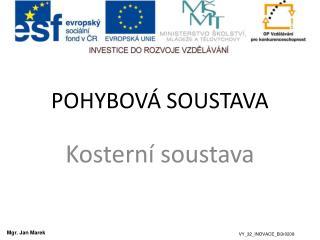POHYBOV� SOUSTAVA