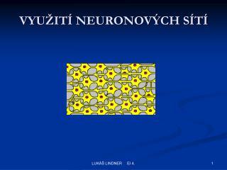 VYUŽITÍ NEURONOVÝCH SÍTÍ