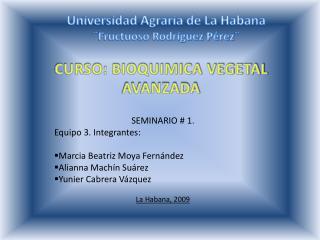 SEMINARIO # 1. Equipo 3. Integrantes: Marcia Beatriz Moya Fernández Alianna Machín Suárez