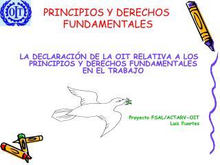 PRINCIPIOS Y DERECHOS  FUNDAMENTALES