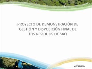 Proyecto  DE deMONSTRAción de GEstión  y  Disposición FINAL DE los Residuos de S AO