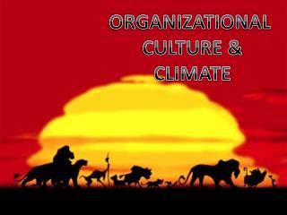 ORGANIZATIONAL  CULTURE & CLIMATE