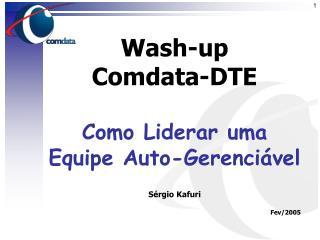 Wash-up  Comdata-DTE Como Liderar uma Equipe Auto-Gerenciável Sérgio Kafuri Fev/2005