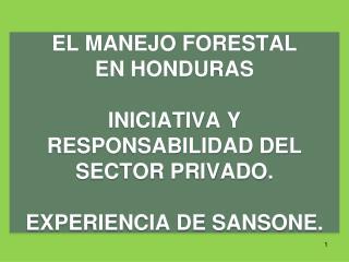 EL PLAN DE MANEJO  FORESTAL  UNA  HERRAMIENTA DE SOSTENIBILIDAD,